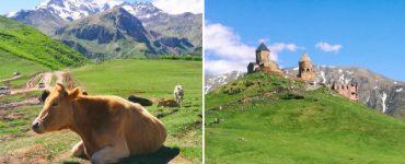 Kazbekas – Gergeti vienuolynas, laisvi arkliai ir karvės – tikrasis Gruzijos grožis