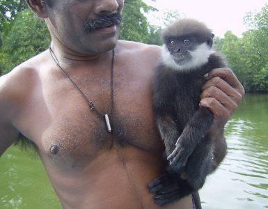 Šri Lanka 2008
