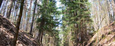 Šilėnų pažintinis takas | Savaitgalio išvyka