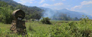 Tanzanijos džiunglių kalnai – Udzungwa