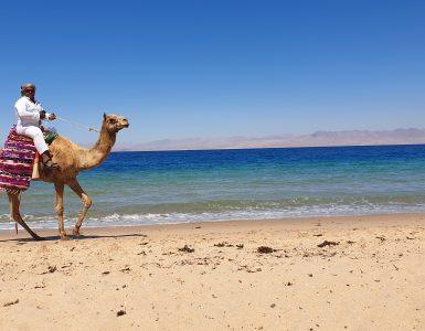 Egipto Sinajaus pusiasalis: vieta, kur norisi tingėti