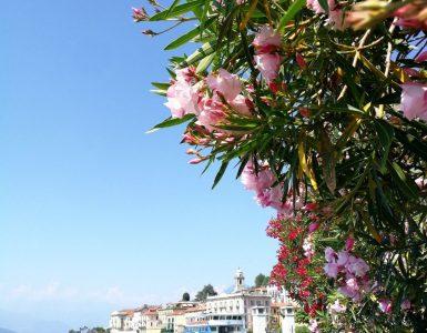 Žavingieji Šiaurės Italijos ežerai: Orta, Komo ir Madžorė