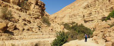 Ein Gedi nacionalinis parkas: gamtos oazė Judėjo dykumoje