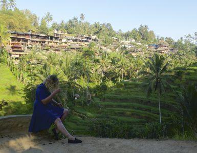 Bali sala – kodėl žmonės nemeluoja…