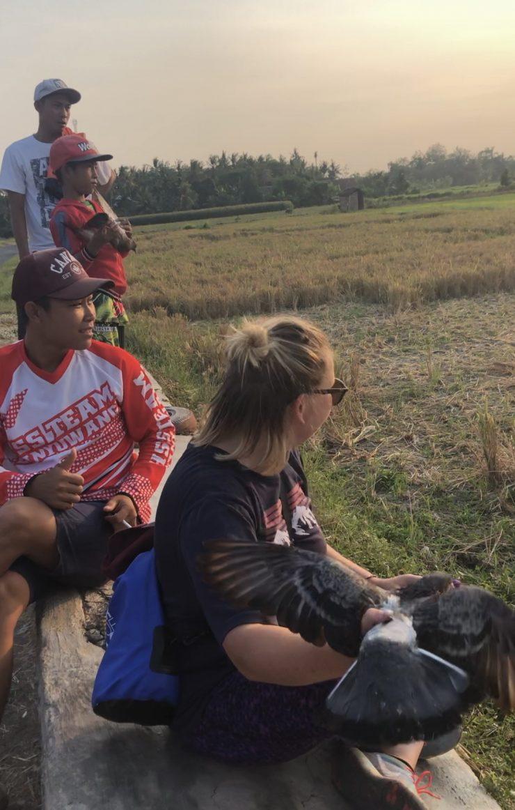 Paukščiai – Indonezijos vyrų sportas