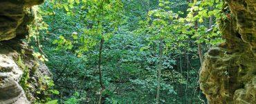 Čiobiškis, Bartkuškio kopa, kai ruduo kupinas vasaros žavesio