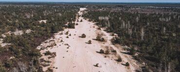Žemyninė kopa Rūdninkų girioje. Dienos išvyka