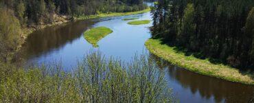 Punžionių atodanga, Balingradas, Buivydžiai ir kabantys tiltai